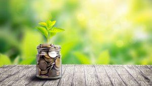 economic advantage of green data center